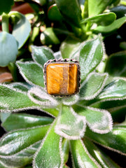 Tiger's Eye Cushion Ring