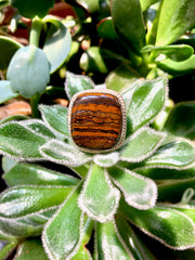 Brown Jasper Cushion Ring