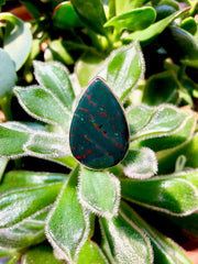 Bloodstone Pear Ring