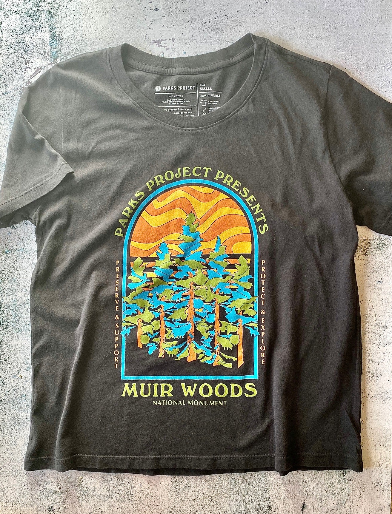 Parks Project Muir Woods Cinco Boxy Tee