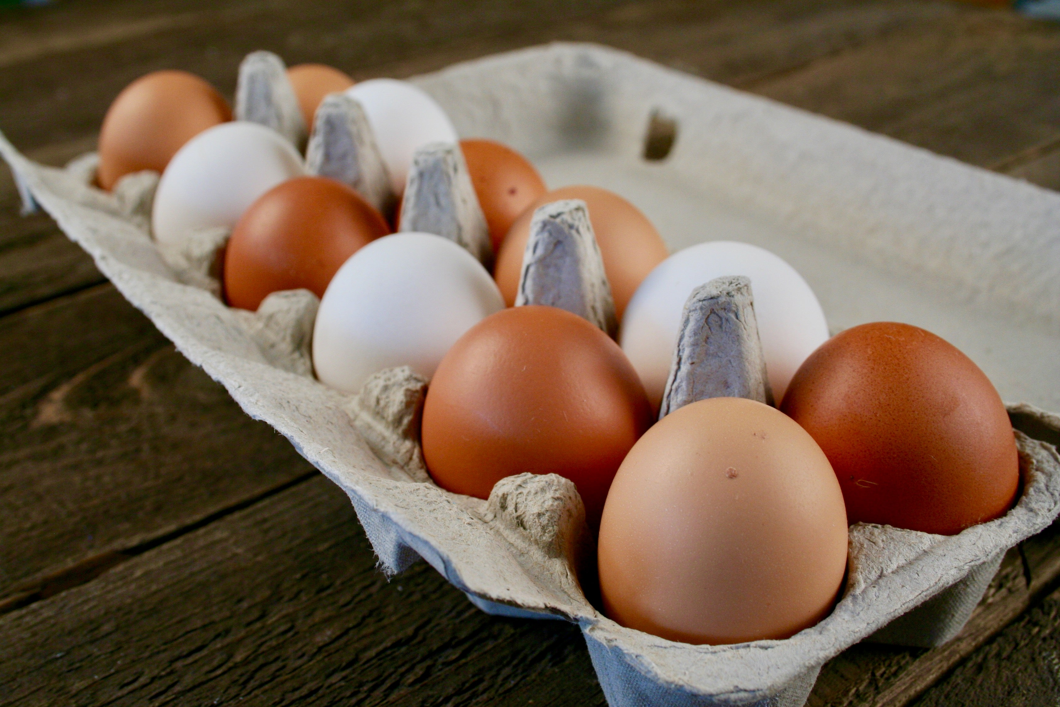 Local Pasture Raised Eggs | 1dz
