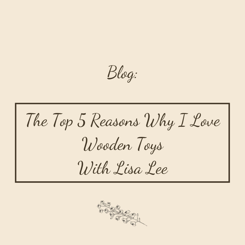 The Top 5 Reasons Why I Love Wooden Toys With Lisa Lee Happy Go