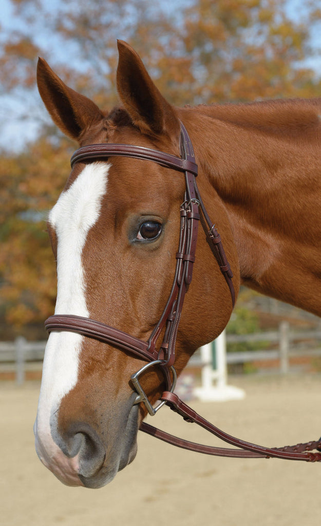 Shires Washington Bridle