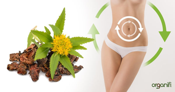 Drastically Improve Well-Being with Rhodiola