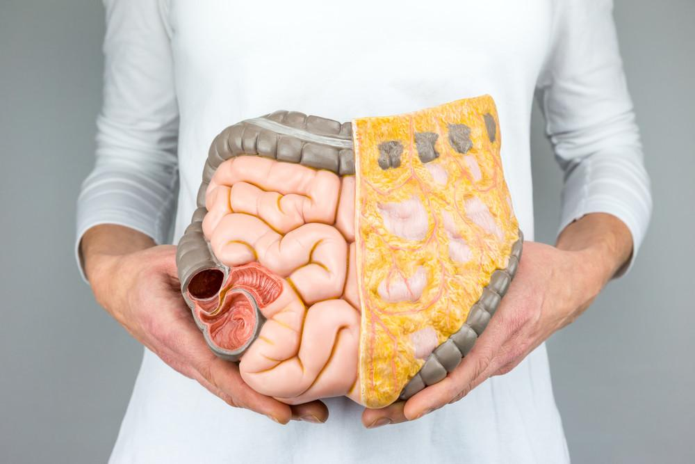 The Shocking Truth About Gut Health and Probiotics