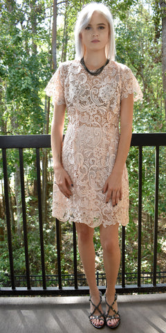 Spring Melody Blush Lace Dress