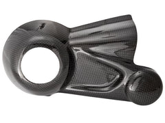 BMW R NineT Protection - Cardan Cover (carbon)