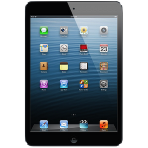 iPad Mini LCD Repair Service Centre London