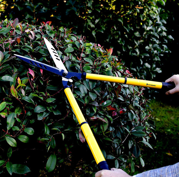 "Planted Perfect Telescoping 22"" Hedge Clippers - Planted Perfect"