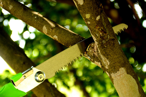 Planted Perfect Folding Steel Pruning Hand Saw - Planted Perfect