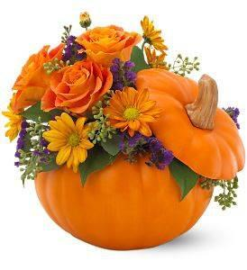 Halloween Fresh Flower Pumpkin Arrangement