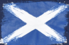 Boys Scottish Flag T-Shirt Saltire St Andrews Scotland NAVY PRIMARK Sizes 1-8 years
