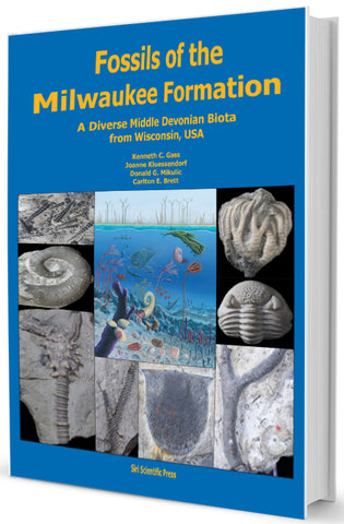 Fossils of the Milwaukee Formation, Wisconsin, USA