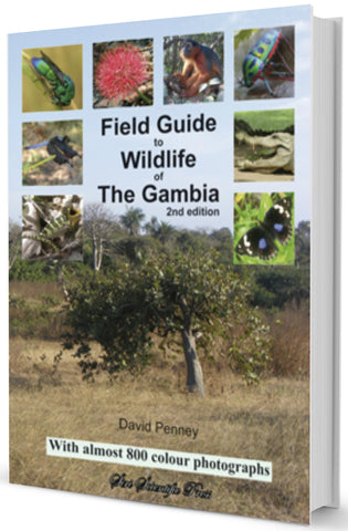 Field Guide to Wildlife of The Gambia 2nd Edition