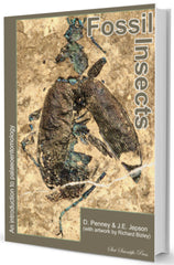 Fossil Insects An introduction to palaeoentomology