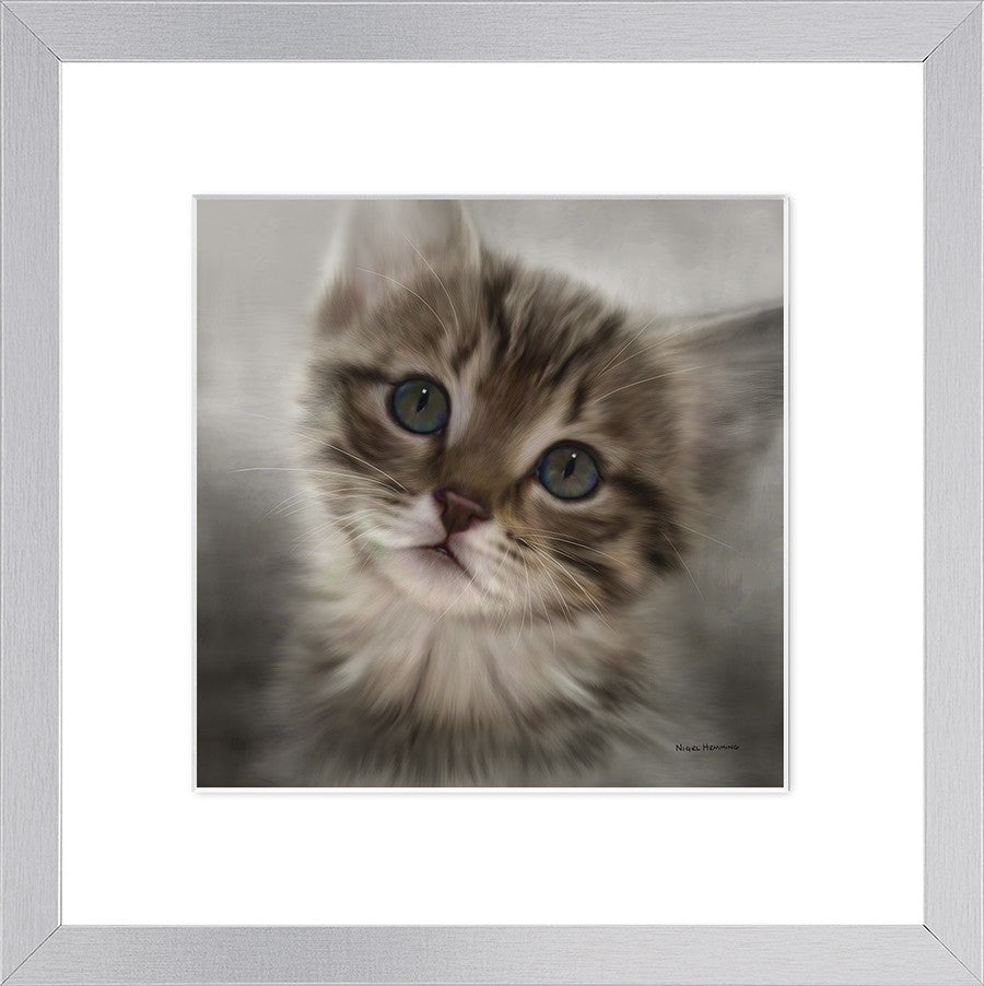 Tabby - small by Nigel Hemming