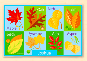 "Fall Leaves Personalized Placemat 18"" x 12"" with Alphabet"