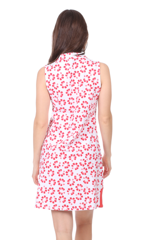 Mackinac Dress in Firework Print