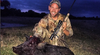 Hog Hunting 101: How to Start this Exciting Sport