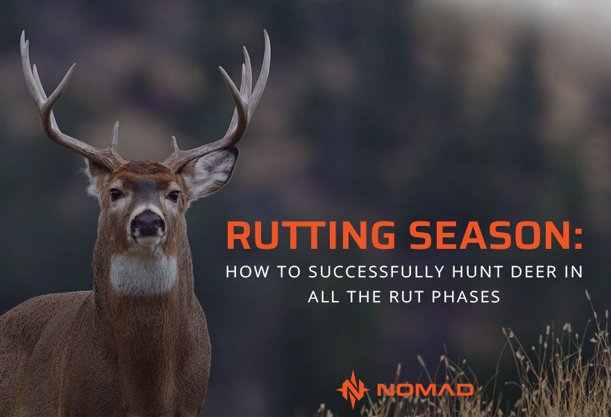 Rutting Season: How to Successfully Hunt Deer in All the Rut Phases