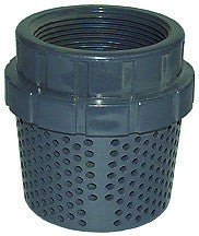 "Legend 201-298   2"" Grey Pvc Foot Valve Screen"
