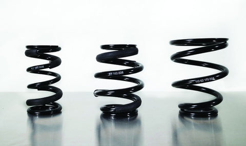 BC Racing Replacement Springs