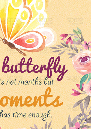 closeup-butterfly-time-quote-rabindranath-tagore-