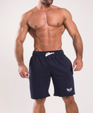 TI Iconic Shorts Navy
