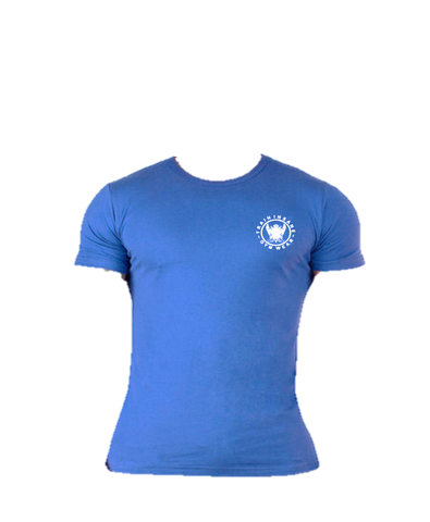 TI FlexFit Blue T-Shirt (Small Logo)