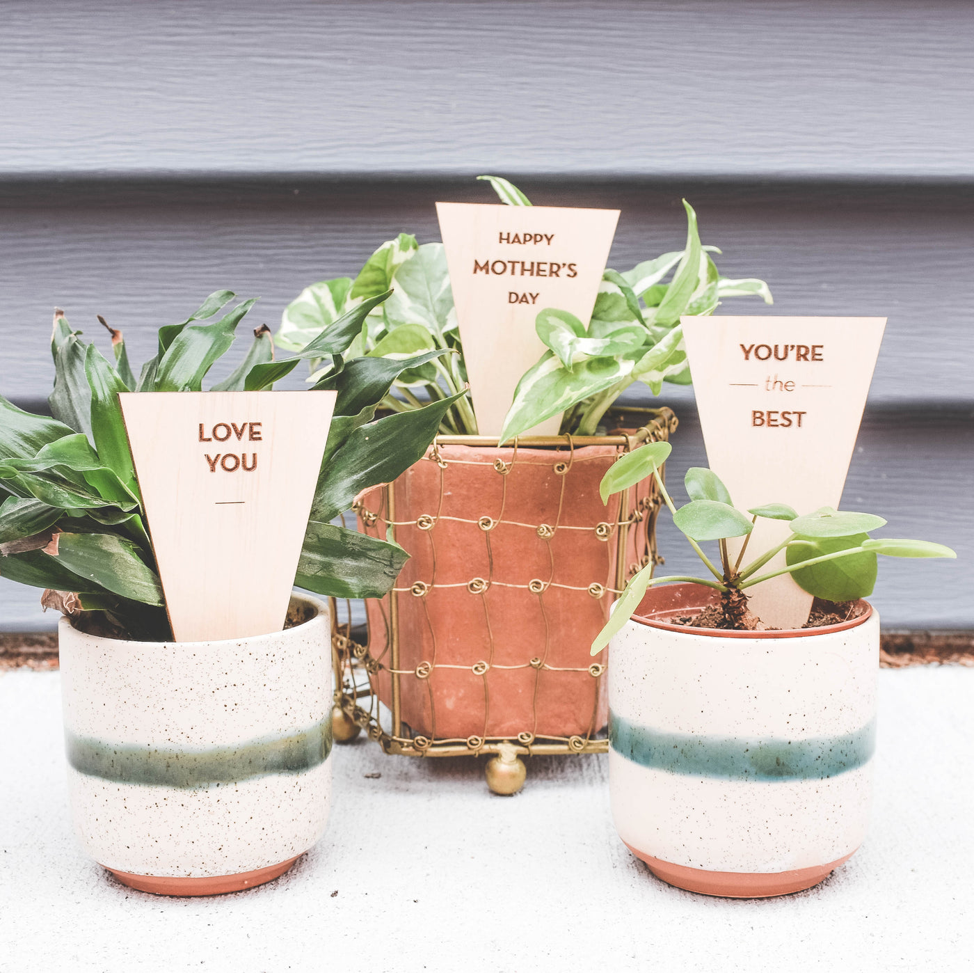 Triangle Plant Tag