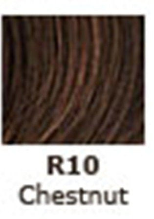 Jessica Simpson HairDo 22 Inch Clip-in Straight Extension, R10 Chestnut