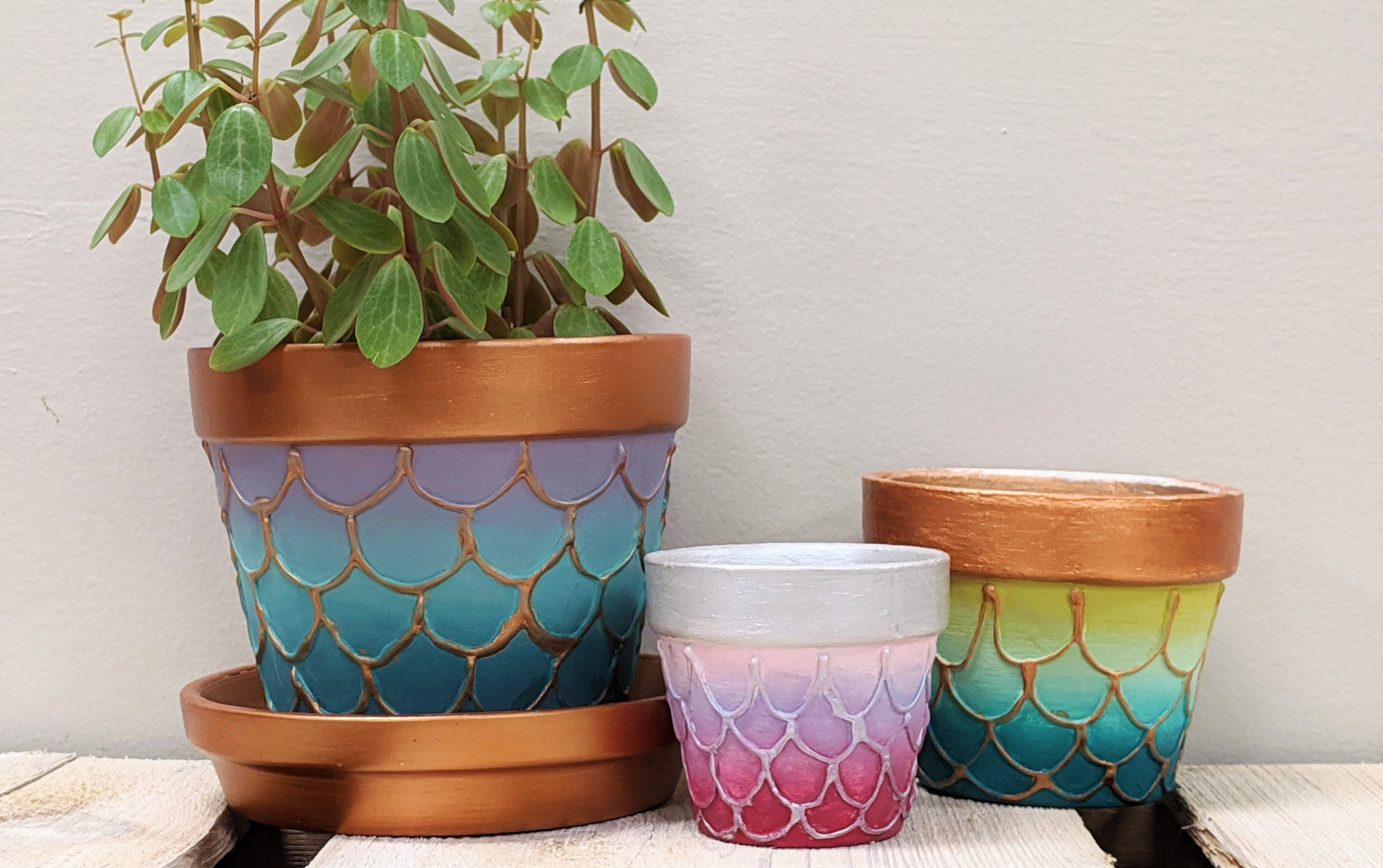 embossed mermaid scale ombre painted terra cotta flower pot