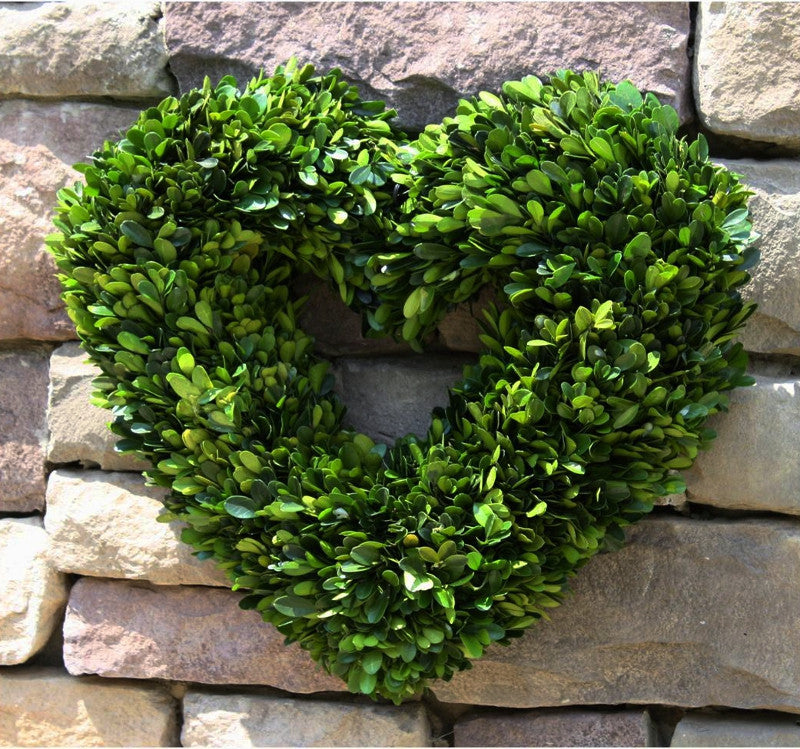 Preserved Heart Boxwood Wreath