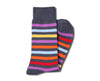 Charcoal with Multicolor Stripes