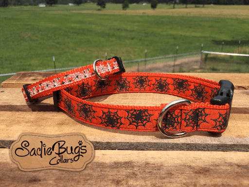 Spider web orange dog collar - Halloween