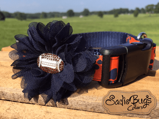 Orange and Blue Navy flower with football center