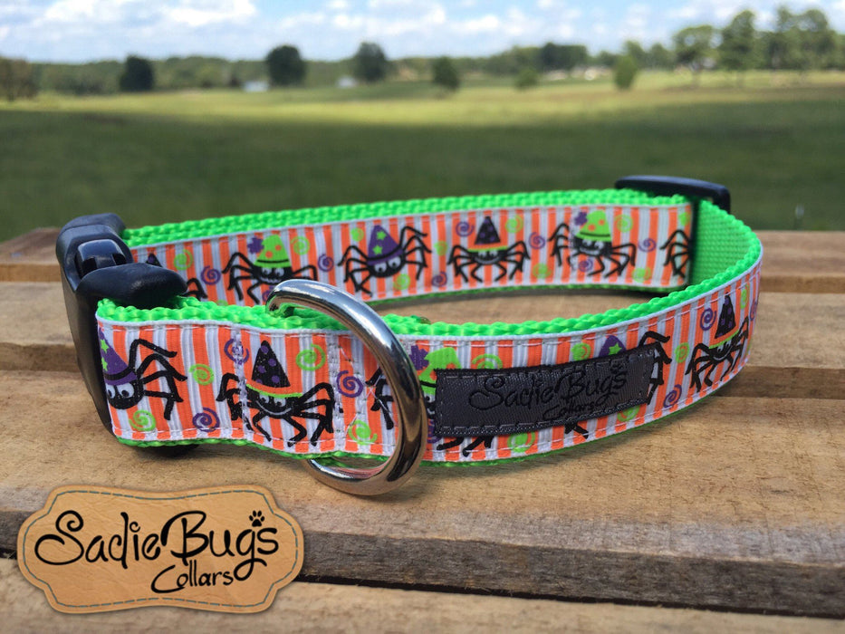 Spider dog collar - Fall / Halloween