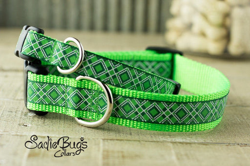 Argyle St. Patricks Day dog collar