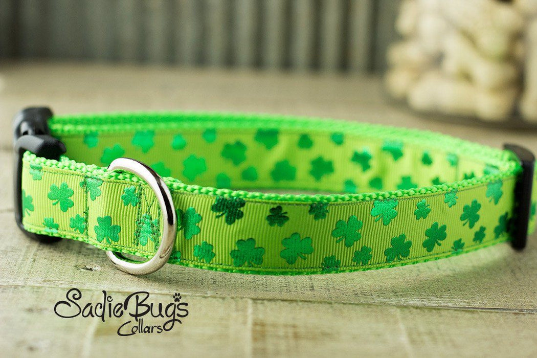 Shamrock dog collar - St Patricks Day