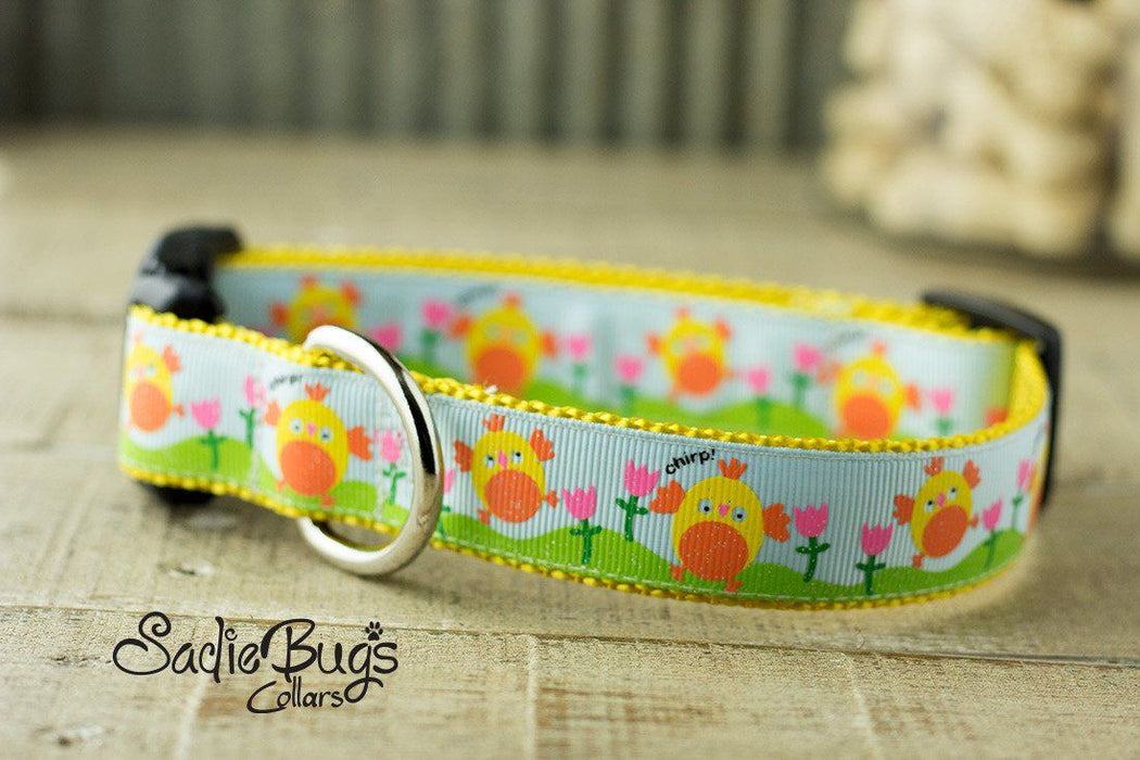 Chirpy Chick dog collar - Easter & Spring