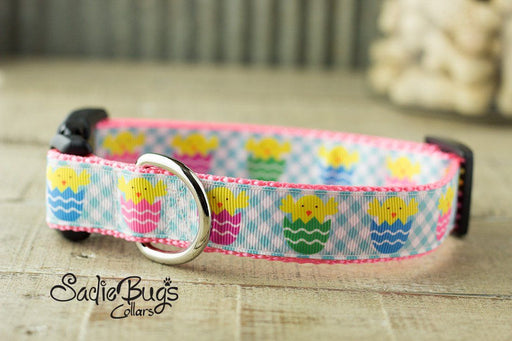 Easter Chick dog collar - Easter & Spring