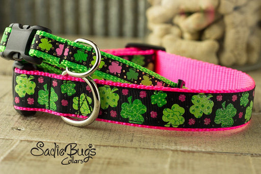 St. Patricks Day dog collar - Shamrock