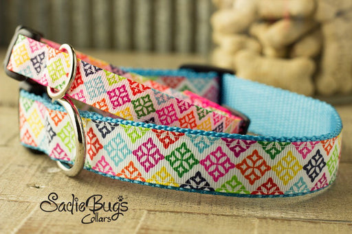 Spring medallion dog collar