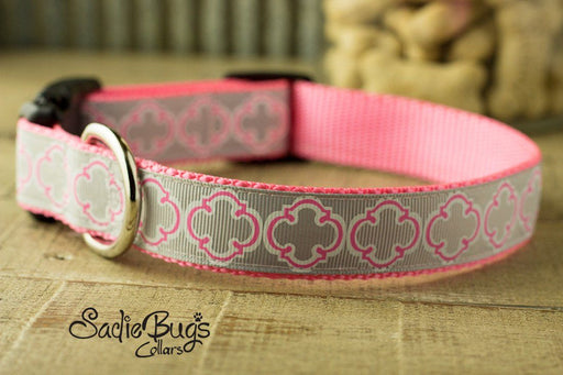 Easter Quatrefoil dog collar - Easter & Spring