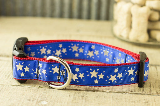 Stars Dog Collar - Patriotic dog collar