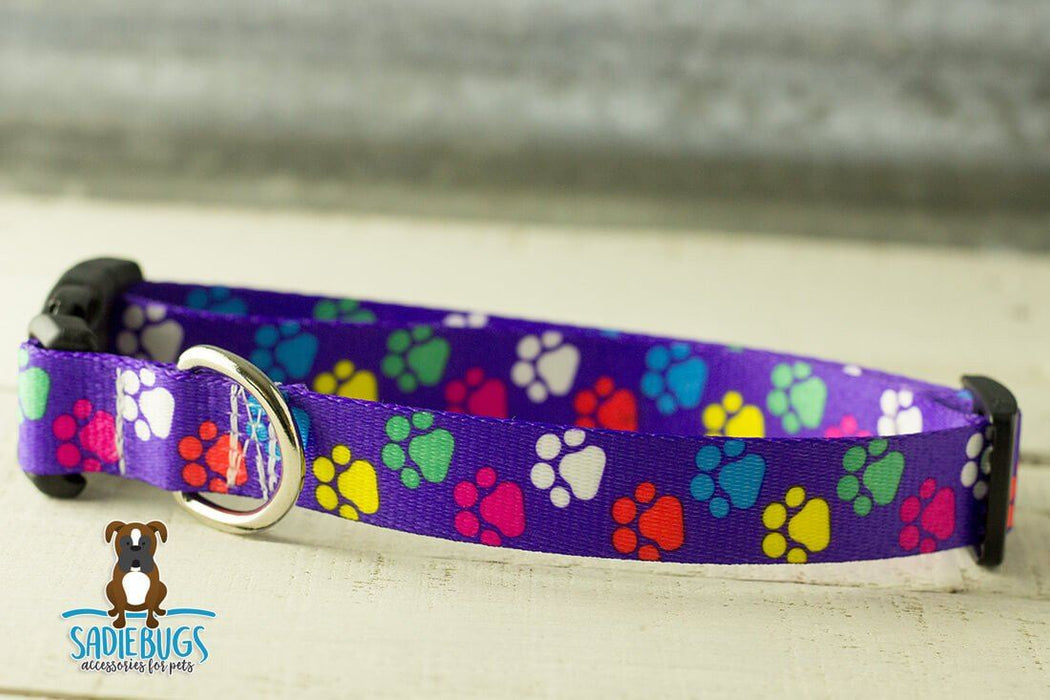 Paw print dog collar - Purple