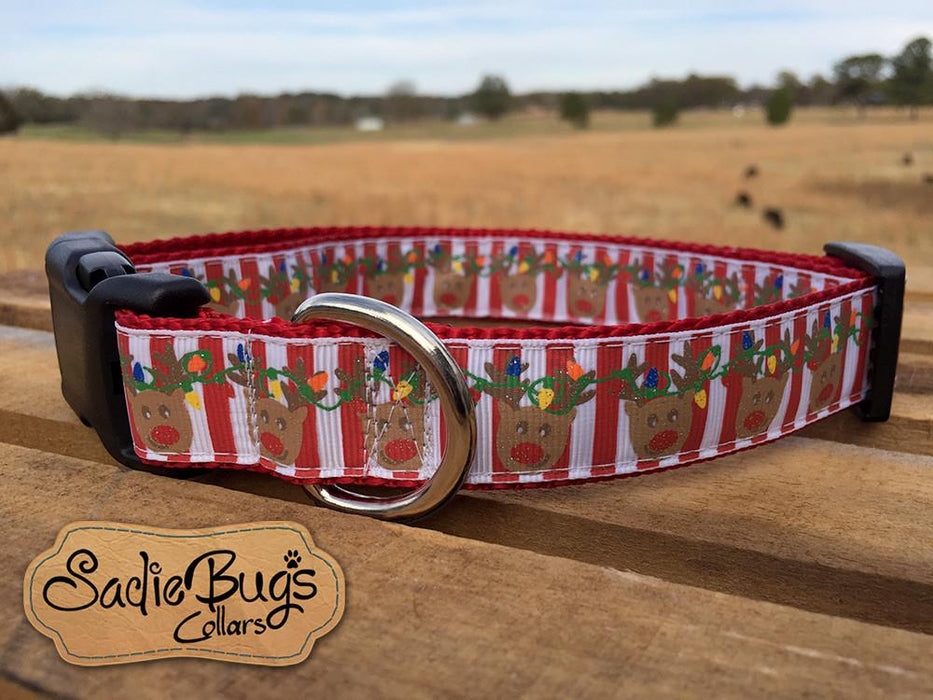 Reindeer striped dog collar - Christmas dog collar