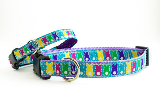Easter Bunny dog collar - Easter bunny tail