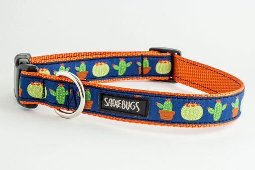 Cactus Dog Collar, southwest dog collar
