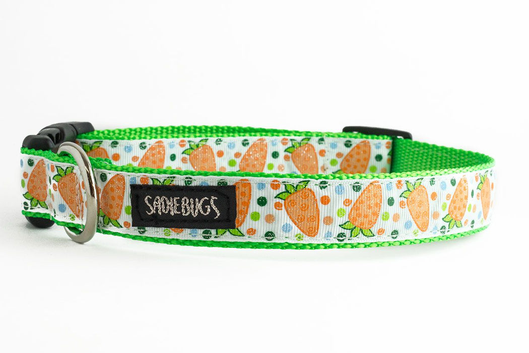 Easter Carrot dog collar - Orange